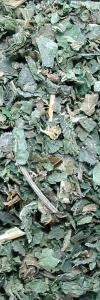 Brennesselblätter geschnitten Bio