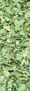 Duftendes Eisenkraut geschnitten Bio